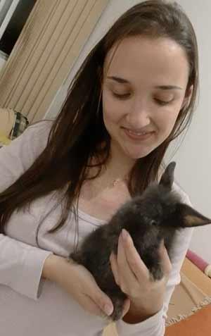 Muitos mini-coelhos adotados!