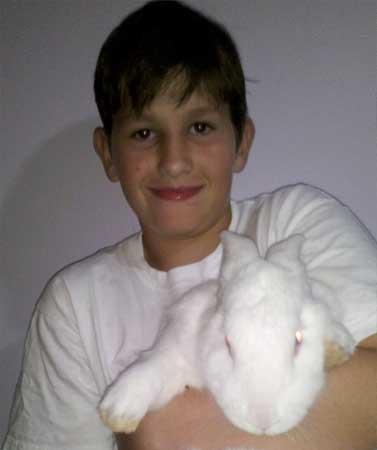 coelho adotado