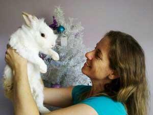 Mini coelho Adotado