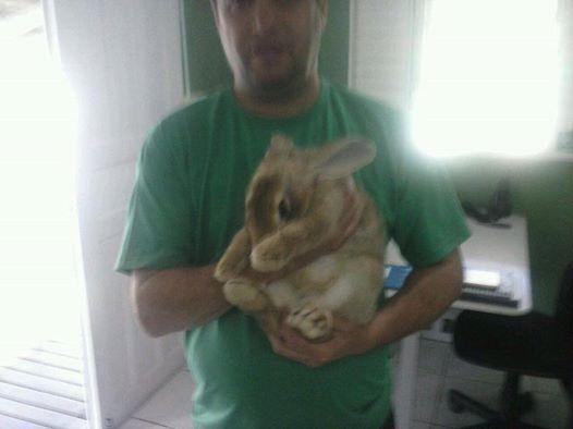 Mias um coelhinho abandonado no Parque Ecológico do Córrego Grande