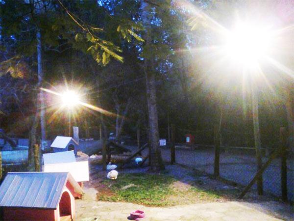 Iluminação nova no espaço dos coelhos e jabutis do Parque Ecológico do Córrego Grande em Florianópolis