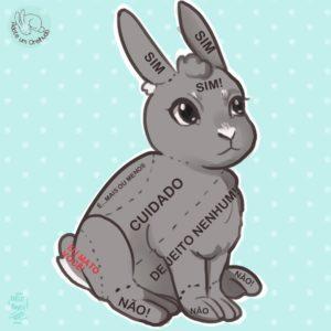 onde tocar no coelho